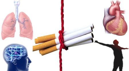 عندما تتوقف عن التدخين %D8%A7%D9%84%D8%A5%D9%82%D9%84%D8%A7%D8%B9-%D8%B9%D9%86-%D8%A7%D9%84%D8%AA%D8%AF%D8%AE%D9%8A%D9%86