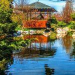 الحديقة اليابانية في اسطنبول لقضاء يوم الربيع
