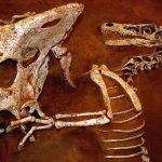 تصنيف الديناصورات - 471324