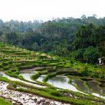 hot springs of Belulang - 475753