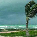 ماهي فوائد الرياح وأنواعها