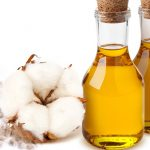 """الفوائد الصحية لـ زيت القطن """" cottonseed oil"""""""
