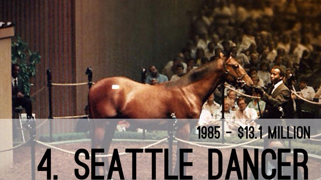 أغلى خيول في العالم