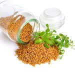فوائد الحلبة لرفع هرمون الاستروجين