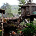 تجربة منازل الأشجار في أوليمبوس جنوب تركيا