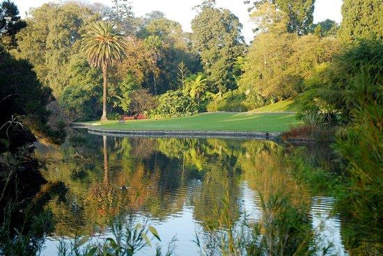 حديقة النباتات الملكية في ملبورن ز ولاية فيكتوريا