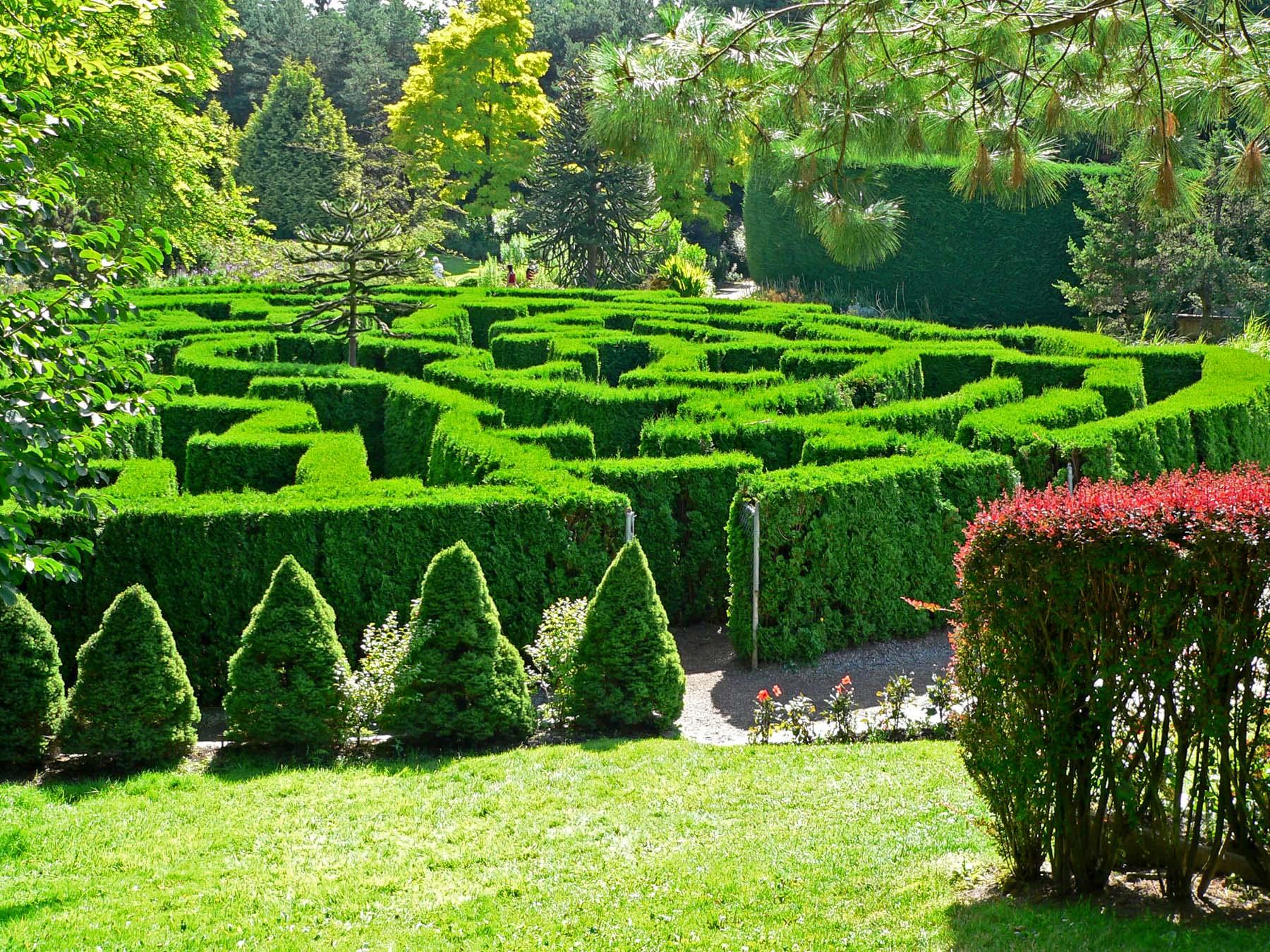 الحدائق المختلفة بداخل حدائق النباتات الملكية