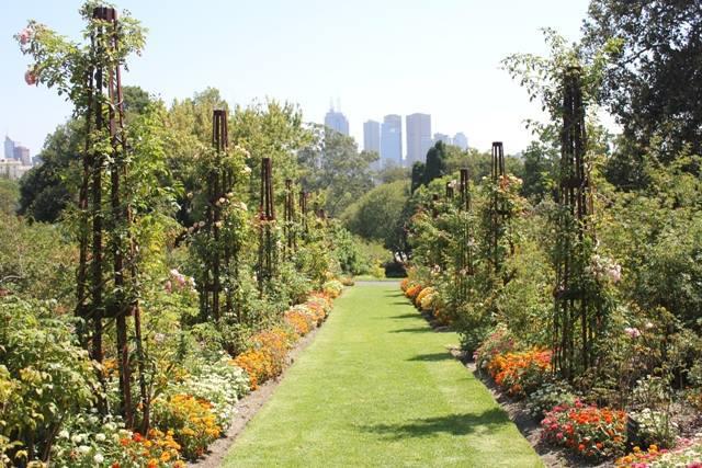 الطريق إلى حدائق النبتات الملكية
