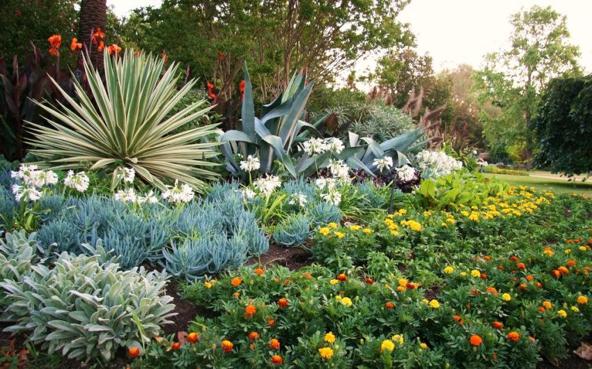 تشييد حدائق النباتات الملكية في ملبورن