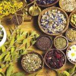 أعشاب آمنة في علاج غازات البطن