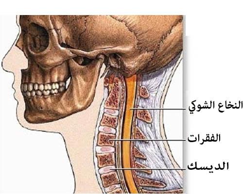 آلام الرقبة احتكاك فقرات العنق مستشفى دله