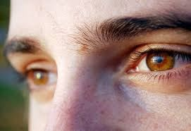 e9d7034299954 مميزات اصحاب العيون العسلية