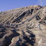 انشطة الخيل في جبل غونونغ برومو - 503474