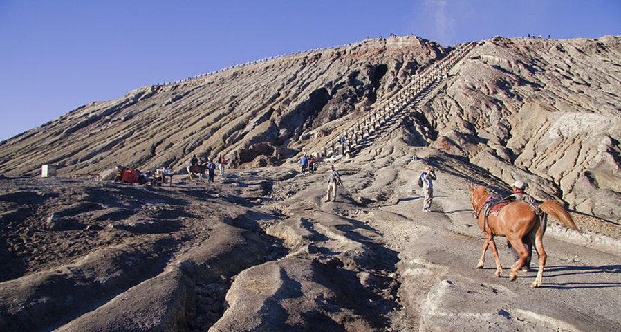انشطة الخيل في جبل غونونغ برومو