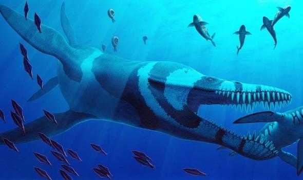 بليوسورس فونكي- Pliosaurus Funkei