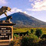 جبل ومحمية غونونغ كيرينسي - 503480