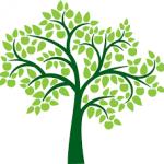 ما هي الشجرة التي ليس لها ظل و لا ثمار
