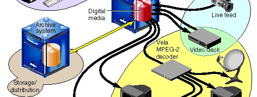 ماهي بروتوكولات الإنترنت؟ وما أنواعها؟ تعرف عليها من هنا