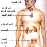 أمراض واضطرابات الغدد الصماء