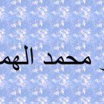 أبو محمد الهمداني عالم يمني اكتشف الجاذبية قبل نيوتن