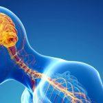 الأمراض التي تصيب الجهاز العصبي وأسبابها