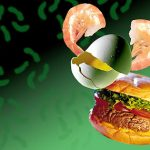 أسباب التسمم الغذائي