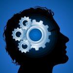 شرح نظرية أنواع الذكاء الثمانية