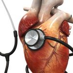 كيفية اكتشاف تضخم عضلة القلب