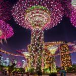 رحلة مصورة داخل حدائق الخليج بسنغافورة