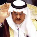 السيرة الذاتية للأمير نايف بن عبدالعزيز آل سعود