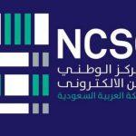 جهود البرنامج الوطني لأمن المعلومات