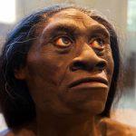 دراسات تكشف لغز انقراض قوم الهوبيت
