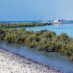 الرؤية البيئية لإمارة أبوظبي 2030