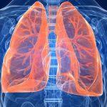 كيفية المحافظة على صحة الرئتين