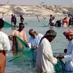 دور الأمن الغذائي بسلطنة عمان