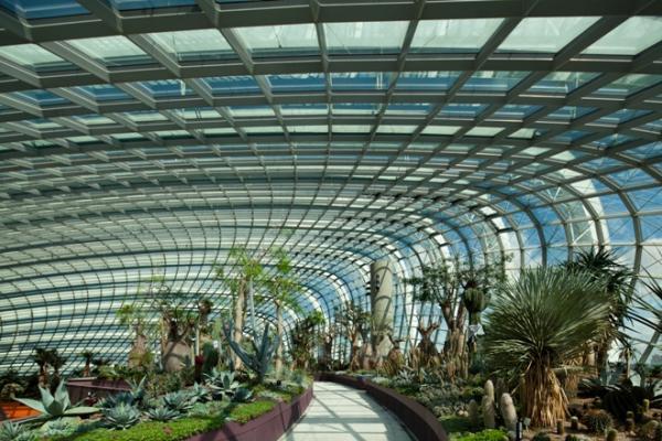رحلة مصورة داخل حدائق الخليج