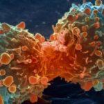 أحدث الأبحاث في التعرف على أنواع السرطان الوراثي بالمملكة