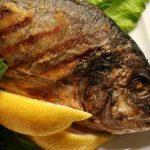 فوائد الأسماك للأطفال الرضع