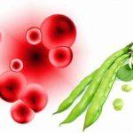 الطعام الممنوع منه مريض انيميا الفول