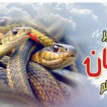 تفسير رؤية الثعابين في المنام لابن سيرين
