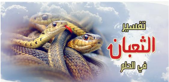 تفسير رؤية الثعابين في المنام لابن سيرين المرسال
