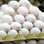 كيفية حفظ البيض بصورة آمنة