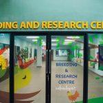 مركز البحوث في منتزه يورونغ للطيور - 561855