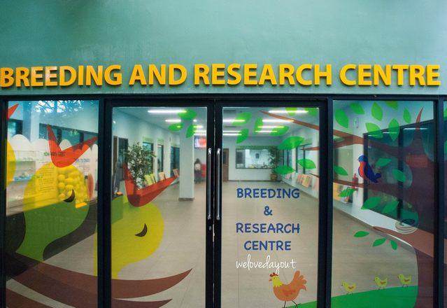 مركز البحوث في منتزه يورونغ للطيور