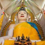 معبد آلاف الأضواء - 566818