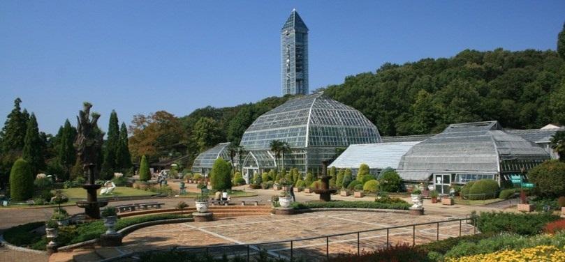 حيوان هيغاشياما - مدينة ناغويا اليابانية