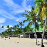 جولة إلى أفضل سبعة شواطئ في سنغافورة