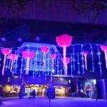 أفضل 5 رحلات عائلية في سنغافورة مع الانتقال