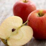 فوائد التفاح لصحة الكلاب