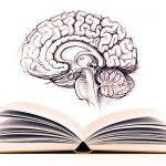 بحث عن الفلسفة الوضعية ورأي الشرع بها